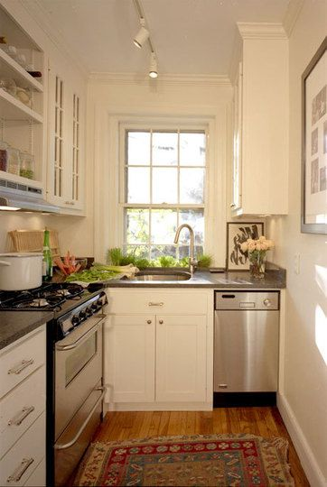 Tiny Kitchen L Shaped Stainless Appliances Herb Window Box With Sash Windows