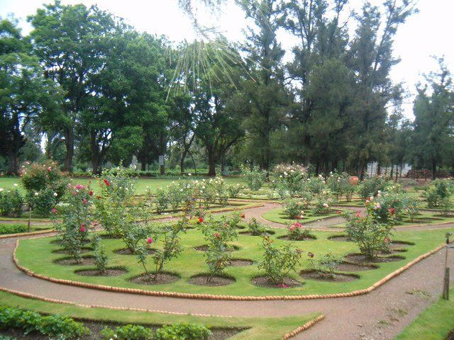 Bertha Marks was very fond of roses and in 1906 this formal rose garden was laid out.