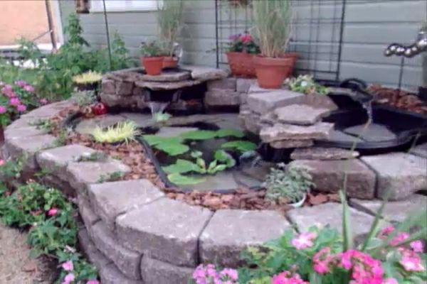 Learn how to create a backyard pond and waterfall; includes details on pond placement, liner installation, pump installation and operation.