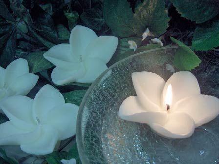 Wedding decorations - white plumeria floating candles