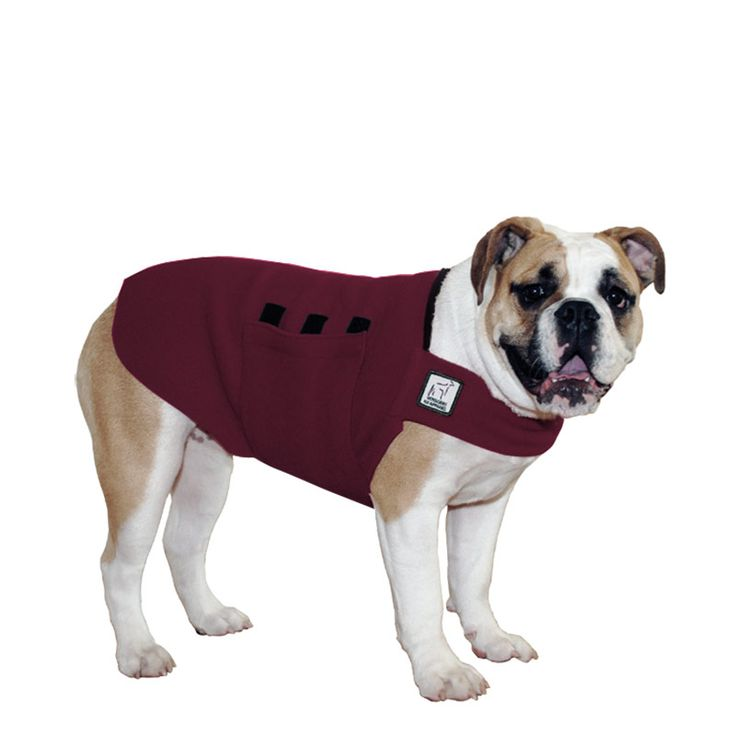 Burgundy Maroon English Bulldog Dog Tummy Warmer, great for warmth, anxiety and laying with our dog rain coat. High performance material. Made in the USA.