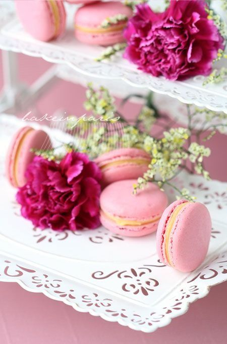 Macarons and flowers - pretty pair