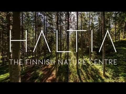 Finnish Nature Centre Haltia - Visit Espoo