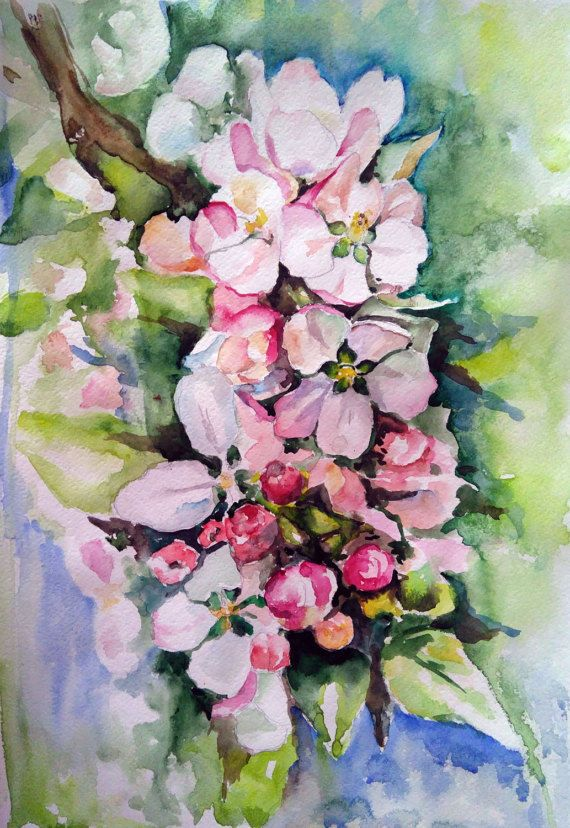 APPLE BLOSSOM Original watercolour painting by PaintingByAHeart