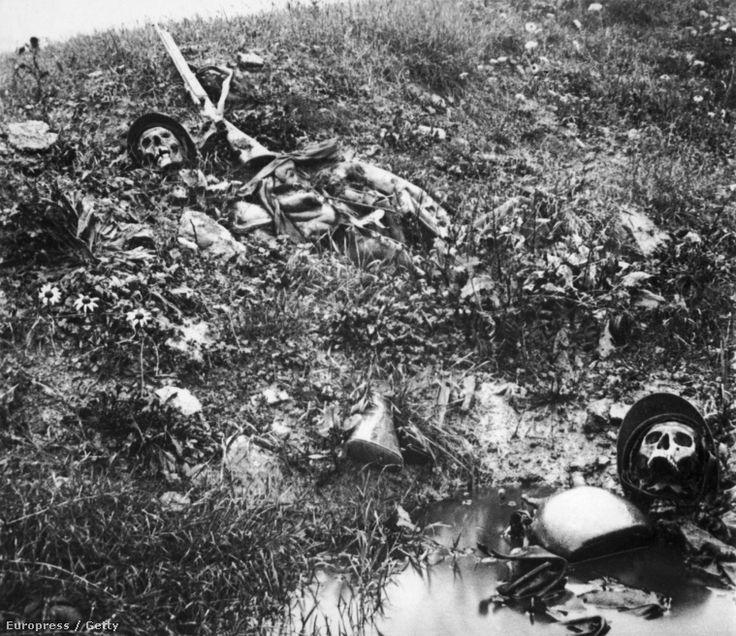 Francia katonák maradványai, 1917.