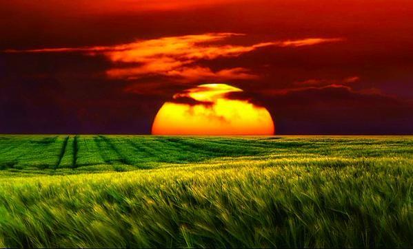 Hayatta her zaman kazanılmaz..Bazen olgunlaşmak için incinmek, bazen de tecrübe kazanmak için kaybetmek gerekir..