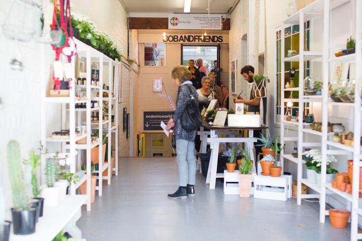 Shop with a stylist tour with #placesandgraces / #bioattic #terrariums #bonsai #62ponsonby  / photo @capturedbykeryn