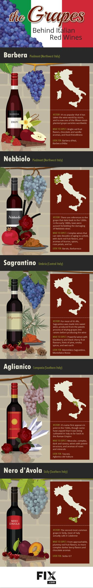 The Grapes Behind Italian Red Wines | #Wine #Wineeducation #Italy
