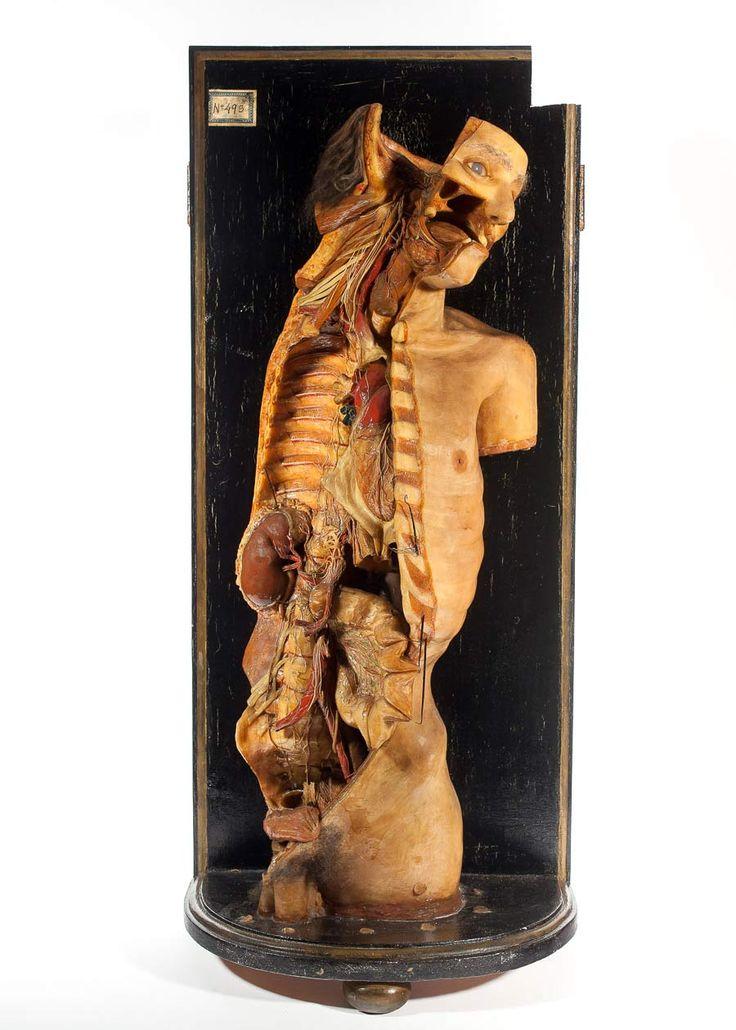 """Exposición: """"Arte y carne"""". Cera del sistema autónomo."""