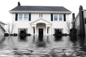 FirstOnSite – Water Damage Restoration and Repair #basement #water #damage http://jacksonville.nef2.com/firstonsite-water-damage-restoration-and-repair-basement-water-damage/  # Water Damage Almost 70% of property damage involves water – through broken pipes, natural flooding, sewer backups or after a fire. Water can cause extensive damage and pose a serious threat to building structures, interior furnishings, important documents and prized belongings. Additionally, mould can begin growing…
