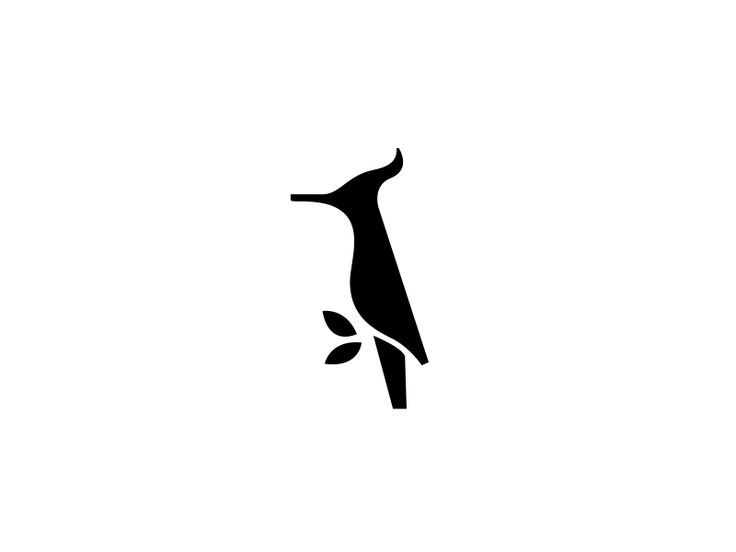 Woodpecker by Ilya Shapko #Design Popular #Dribbble #shots
