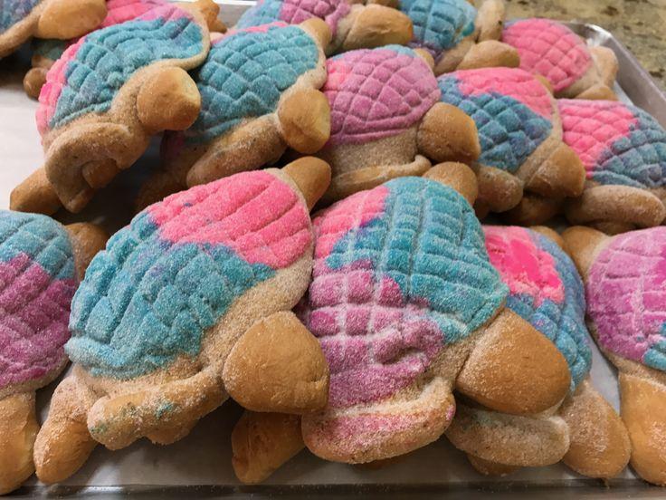 UNICORN TURTLES from El BOLILLO BAKERY in HOUSTON, TX #elbolillobakery #elbolillo #bolillo #panaderia #pandulce #bakery #bake #concha #pasteleria #houston #tresleches #empanada #cake #local #mexican #mexicandessert #mexicanbakery #food #postres #dessert #breakfast #uniconcha #concha #cafe #coffee #desayuno #mexico #summer #unicorn #color #fiesta #party #unicornparty #turtle #bread