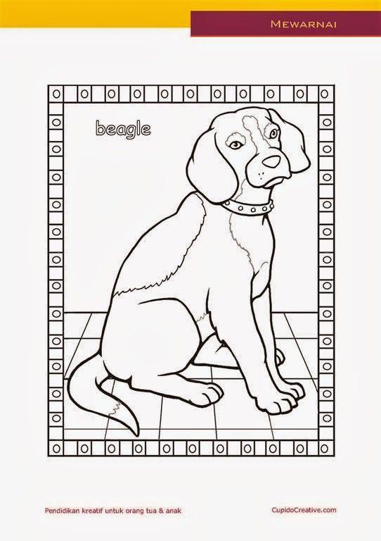 kerajinan anak paud (balita, TK, SD), mewarnai anjing beagle