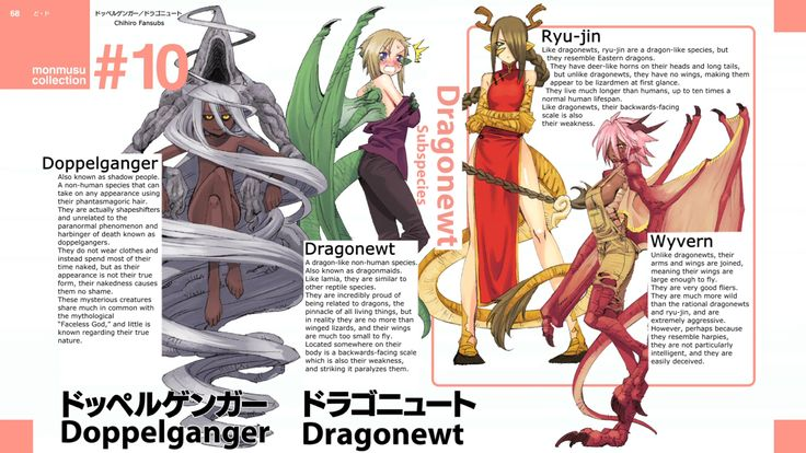 Monster Musume Subspecies Cards | Monster Musume / Daily Life with Monster Girl…