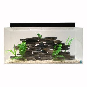 SeaClear 40 Gallon Aquarium | Aquariums | PetSmart
