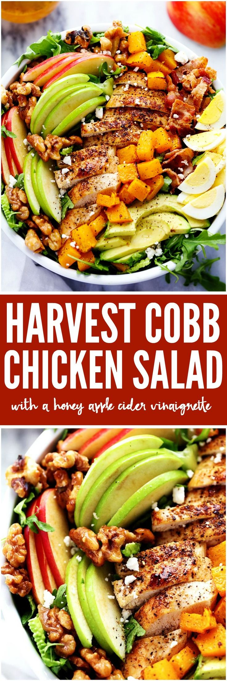 Harvest Cobb Chicken Salad with a Honey Apple Cider Vinaigrette is filled with crisp fall apples, roasted butternut squash, and all of the delicious things of fall come together in this mouthwatering salad.
