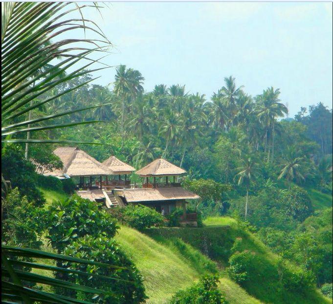 Villa Santai | 4 bedrooms | Ubud, Bali #exterior #vaill #bali #forest #green