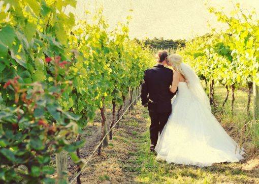 Lovers in the Vineyard Location: Morning Star Estate Photography: Michelle Pragt http://michellepragt.wordpress.com/