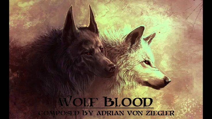 More of the music I listened to while penning these books.  Adrian von Ziegler - Wolf Blood