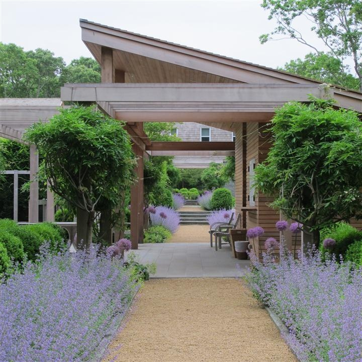 edmund hollander / brian patch: Landscape Architects, Modern Plantings, Contemporary Gardens, Aa Gardens, Landscapes, Hollander Landscape, Mums Gardens