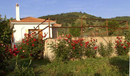 http://skopelosholidays.weebly.com/agravlis-country-villa-skopelos.html#.UmPv4Pnvi4E