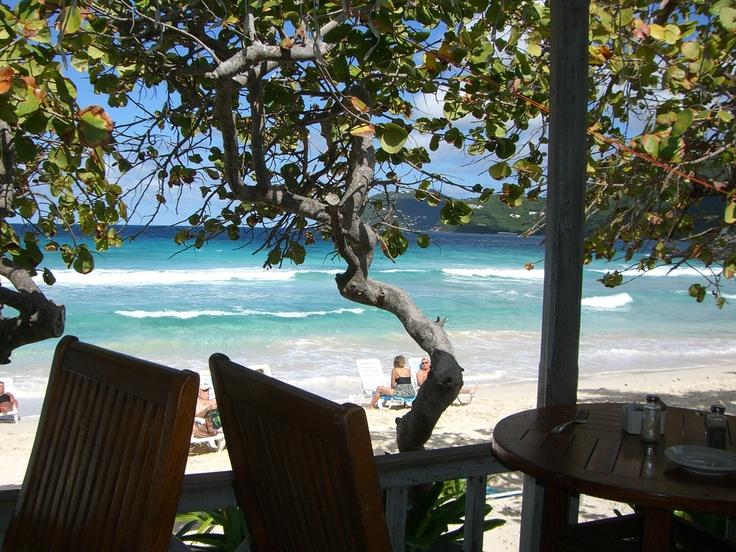 Typical beach setting in Tortola - British Virgin Islands