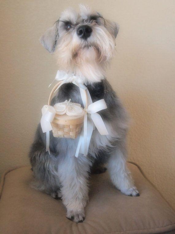 Dog Flower Girl Ring Bearer Wedding Basket camellia flower choose your colors by ArtisanFeltStudio, $15.00