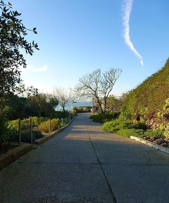 One of the exterior paths around Alcatraz Island. Want this picture printed on canvas or cards etc? Click on the image :)