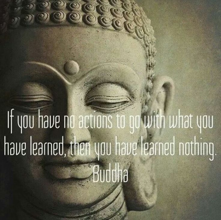 If you have no actions to go with what you have learned, then you have learned nothing. - Budda