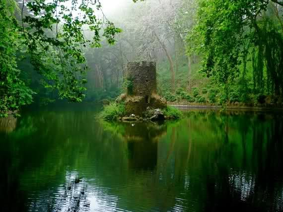 Tiny castle in the pond... Sintra (Portugal) is like a fairytale place. Spots like this are everywhere and available to everyone, specially on Sintra mountain, just outside town.