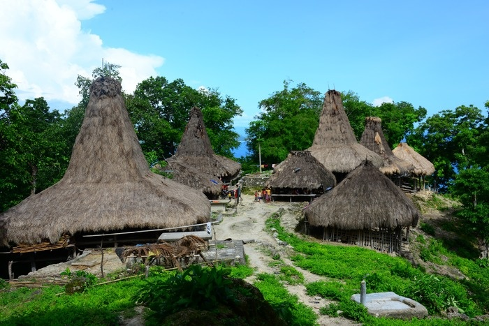 Home sweet home: A typical village in Sumba Island. (Photo by David Metcalf).