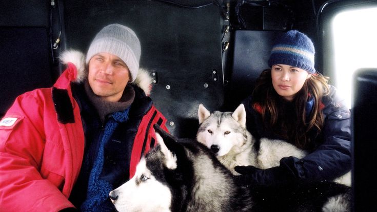 'Eight Below' (2006) Walker's biggest box office hit outside of the Fast franchise was Eight Below. Disney's adventure drama about sled dogs grossed over $120 million.