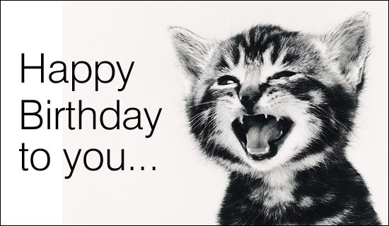 Happy Birthday to you singing cat – Online Birthday Cards