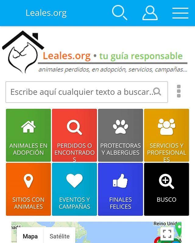 Sabías que Leales.org es la ÚNICA plataforma donde CUALQUIERA puede publicar su animal en adopción o animal perdido y sin registros descargas instalaciones y compatible con TODOS los móviles tablets y ordenadores?. NO LO ABANDONES SÚBELO A LEALES.ORG  #Difunde en #LealesOrg una #adopción y #adopta o sé #acogida para #AdoptaNoCompres O un #SeBusca de #perro o #gatos; #perdido o #encontrado para #NoAlMaltratoAnimal  https://www.instagram.com/p/Bfz2f46BY3W…