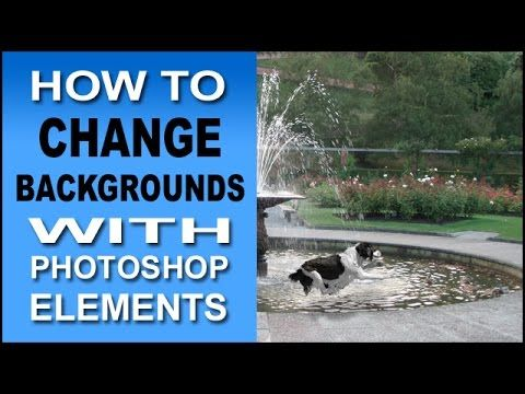 How To Change Backgrounds With Photoshop Elements