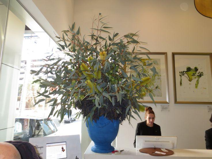 Eucalyptus display