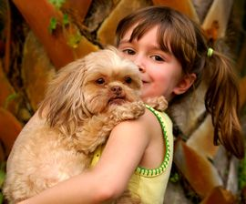 Make a Disaster Plan for Pets: How to keep pets safe in natural disasters or everyday emergencies