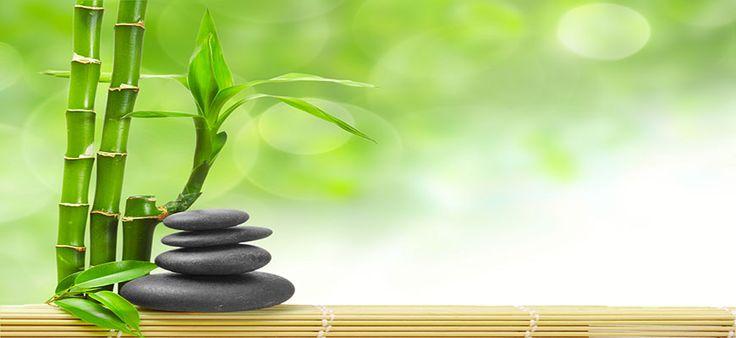 Bamboo and zen stones wallpaper  Wallpaper Wide HD  zen