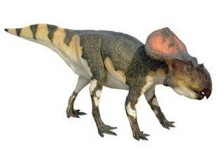 Blog de los niños: DINOSAURIOS: Tipos de dinosaurios