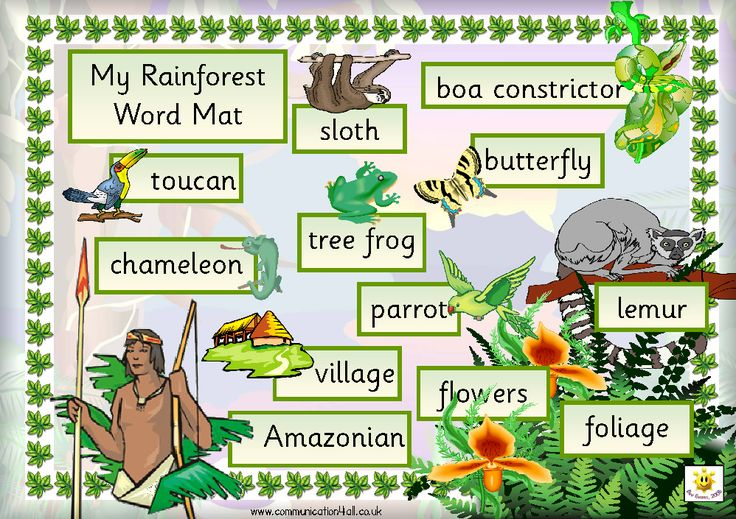 FREE printable Rainforest Word Mat (also makes a great poster)
