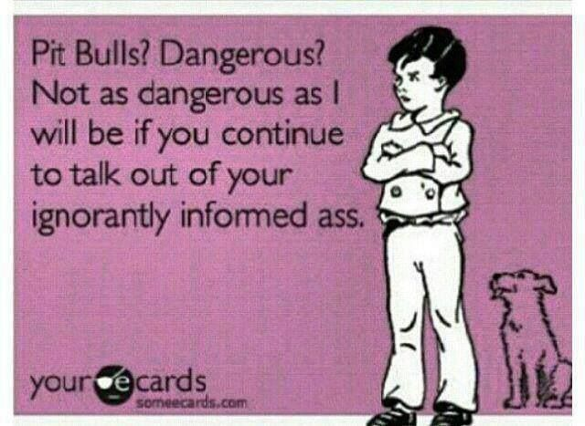 Pitbull advocate...i think this all the time!!! Lol love this