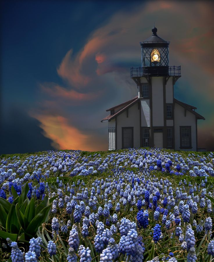 3395 by peter holme iii on 500px