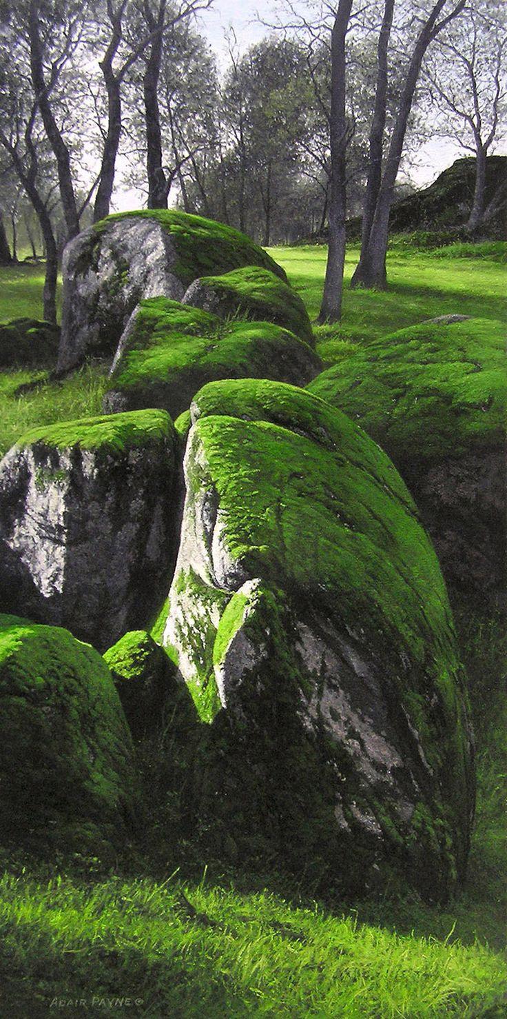 best Moss Gardening images on Pinterest Gardening Landscaping
