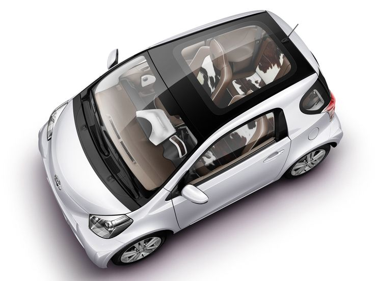 "Toyota iQ ""Collection"" (KGJ10) '2009"