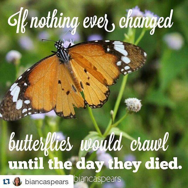 Big things are coming! #nocaterpillarshere #createchange #beyourbrand #balimastermind