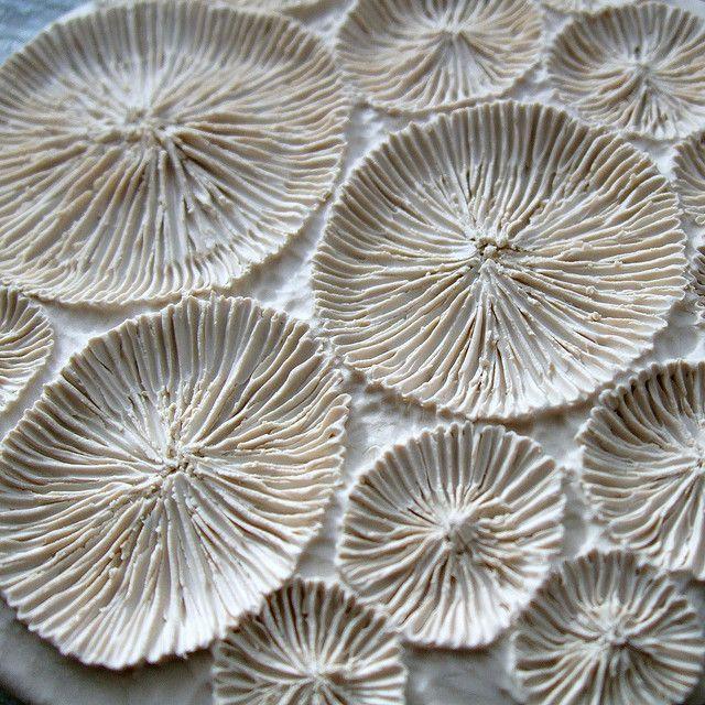 Lisa Stevens - coral 005 wip porcelain greenware - small coral wall hanging