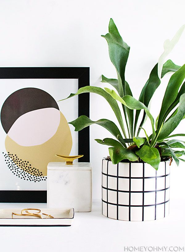 You can upgrade a plain planter with some thin black tape.