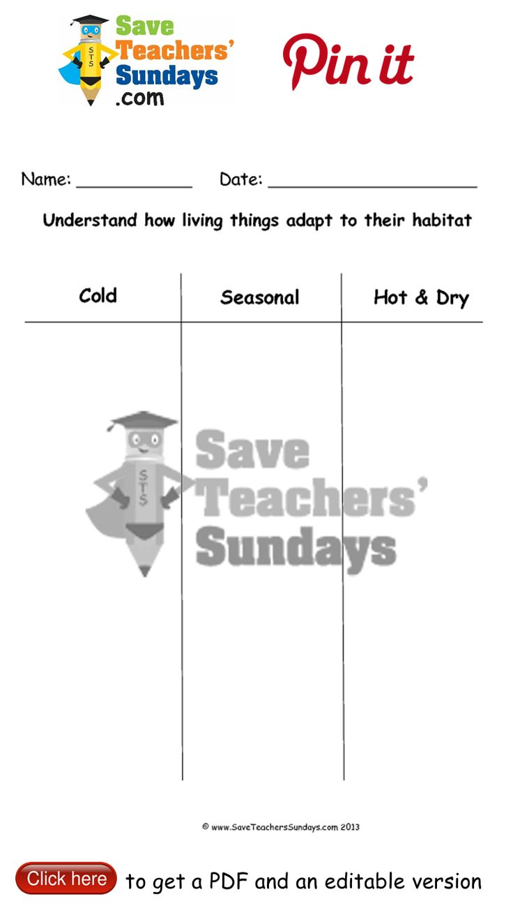 worksheet Adaptations Worksheet 30 best year 2 living things and their habitats lesson plans 10 animal adaptations worksheets other primary teaching resources