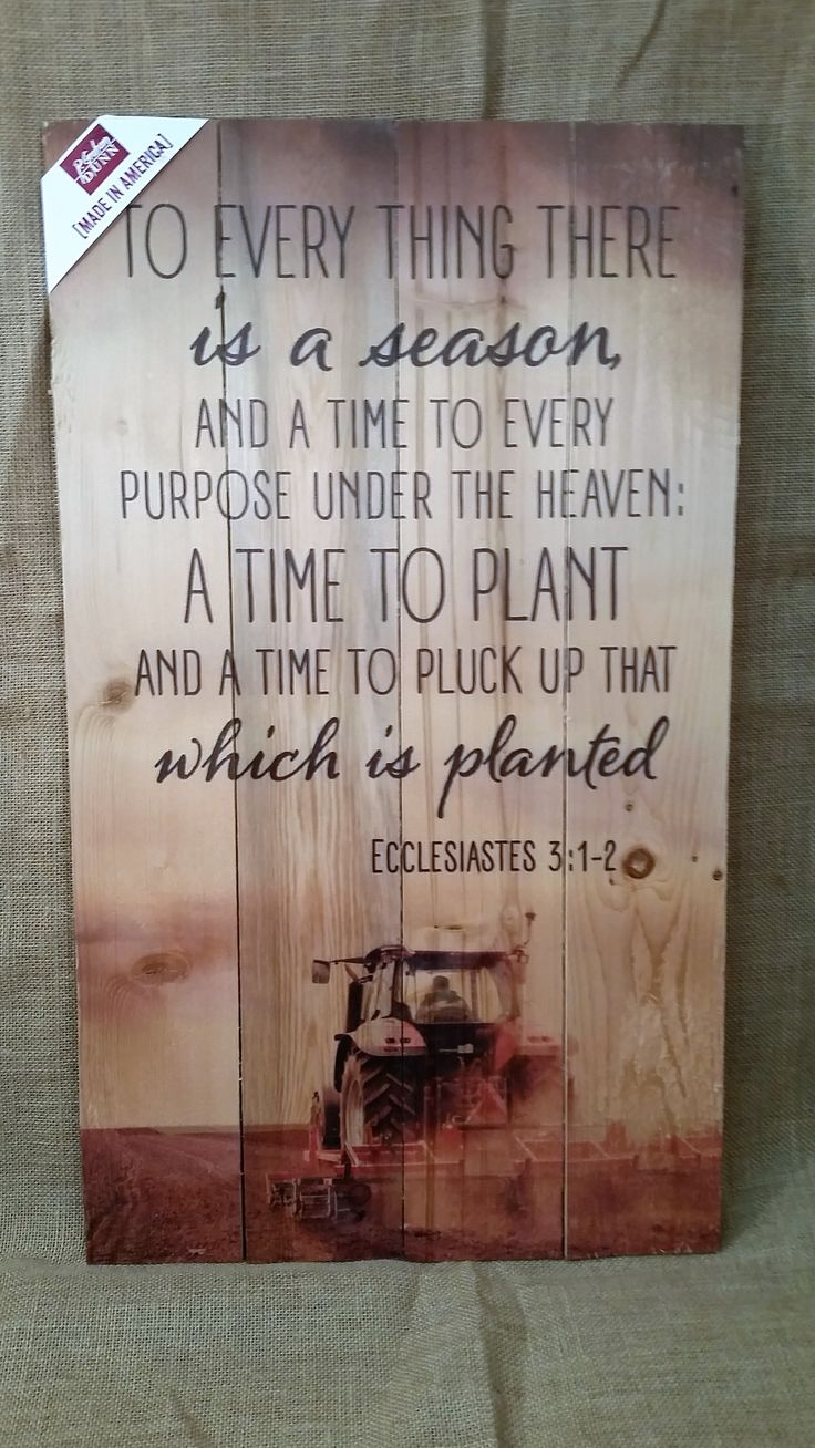 25 Best Pallet Quotes On Pinterest Rustic Painting