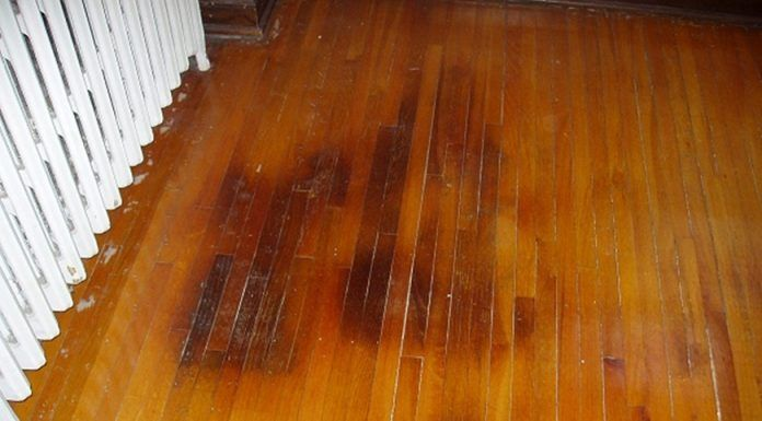 cat pee wood floor stain
